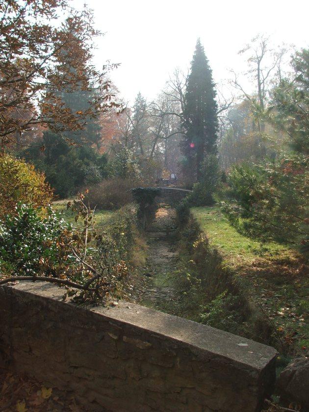Arboretumpatak